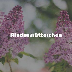 Das Märchen: Fliedermütterchen