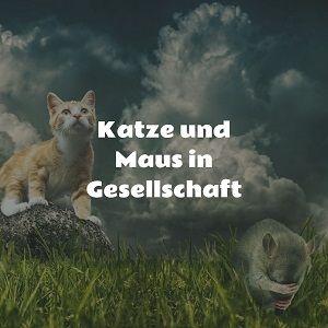 Katze und Maus in Gesellschaft